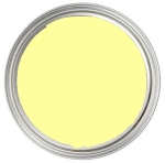 Tag-Out Paint Color: Urban Yellow